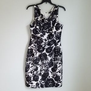Ann Taylor BW Floral Print Cocktail Dress